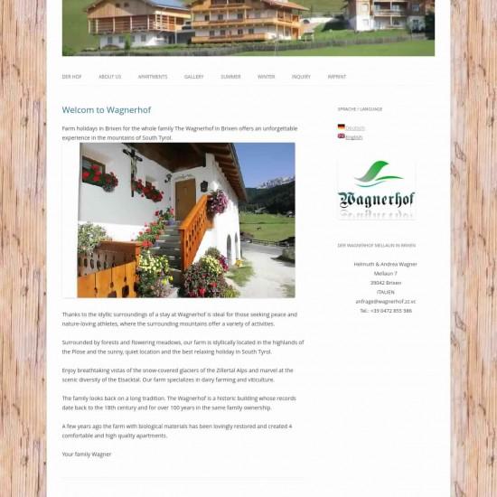 Webdesigner Wels Graz Linz Arlberg Salzburg Regensburg Kosten